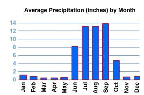 Average Precipitation in Puerto Vallarta
